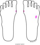 thymus feet When Sole Meets Soul